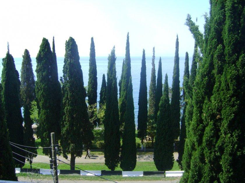 Отдых в Новом Афоне в Абхазии